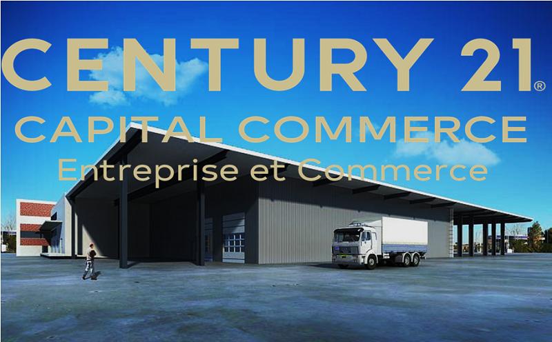 Local d'activité à louer - 250.0 m2 - 45 - Loiret